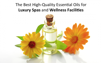The Best High-Quality Essential Oils for Luxury Spas and Wellness Facilities