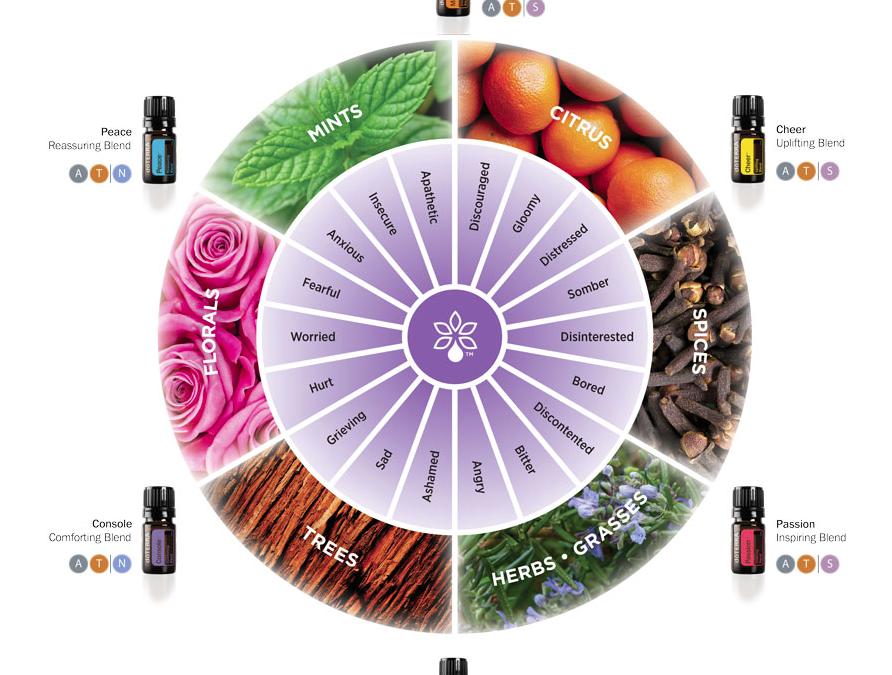 doTERRA Emotional Aromatherapy Wheel